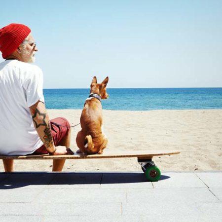 Domanda legale: Fotografia animale e diritto all'immagine