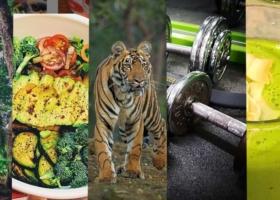 Motivati nel Nuovo Anno – I migliori esercizi di Fitness per la vostra Casa