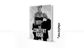 Il libro di contenuto: Scrivere buoni testi di SEO – raccomandazione del libro