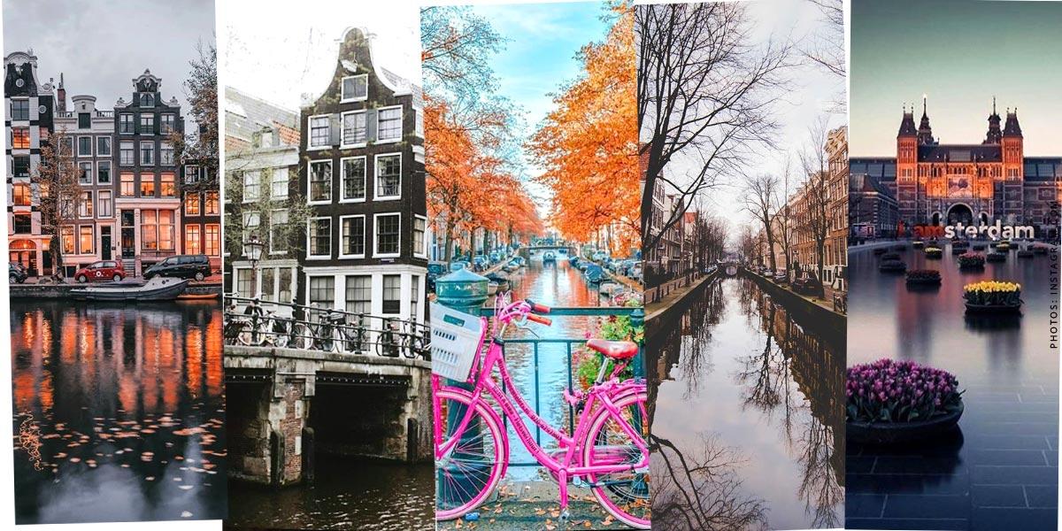 Olanda: Vacanze con cane e bambino - Visita turistica, alberghi e mare