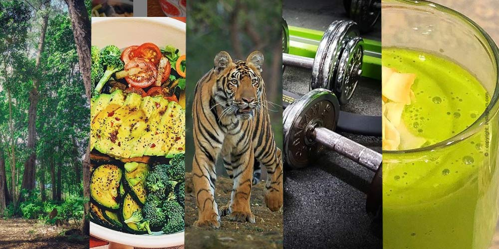 Motivati nel Nuovo Anno - I migliori esercizi di Fitness per la vostra Casa