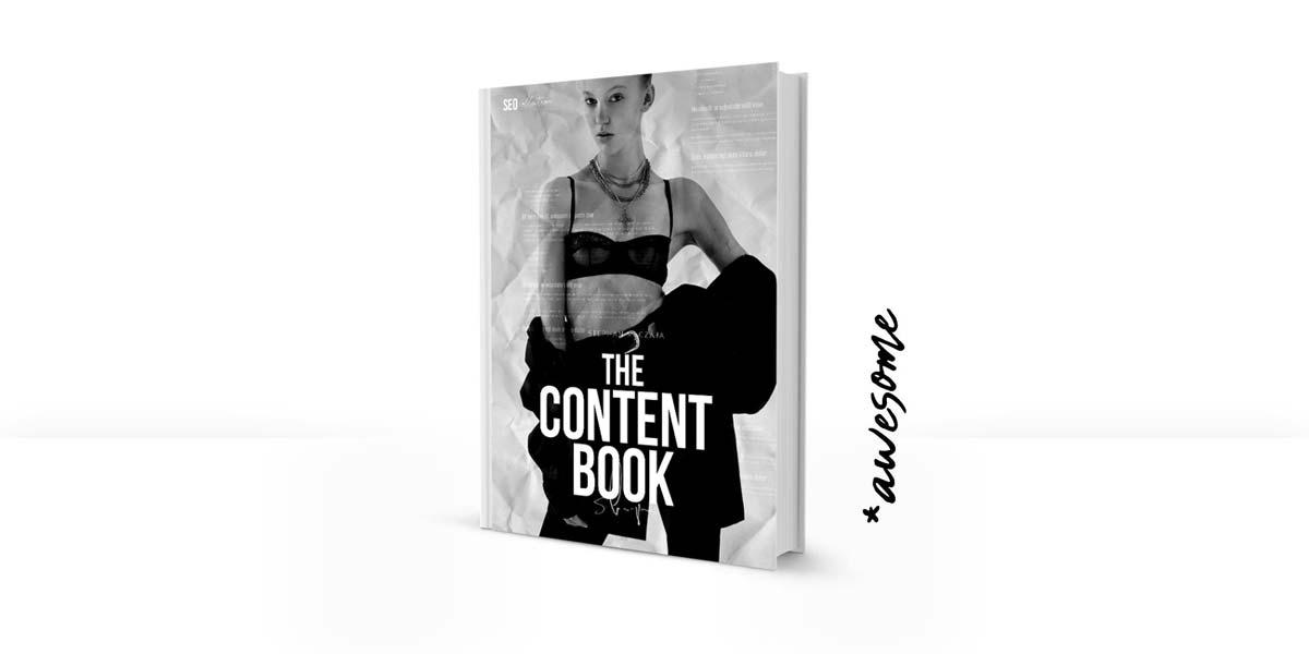Il libro di contenuto: Scrivere buoni testi di SEO - raccomandazione del libro