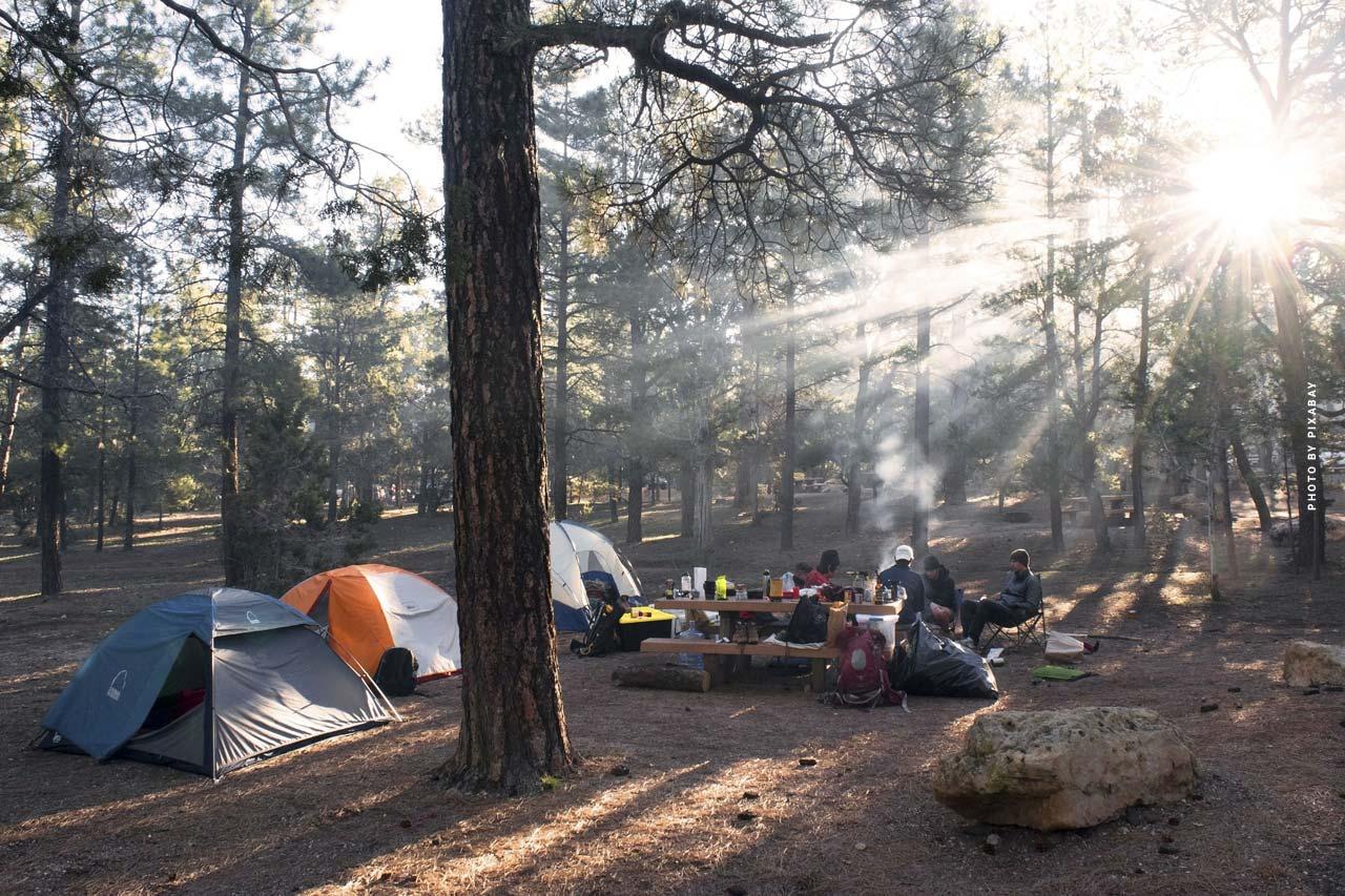 Foresta nera: Natura, wellness & campeggio - Vacanza & escursioni in montagna