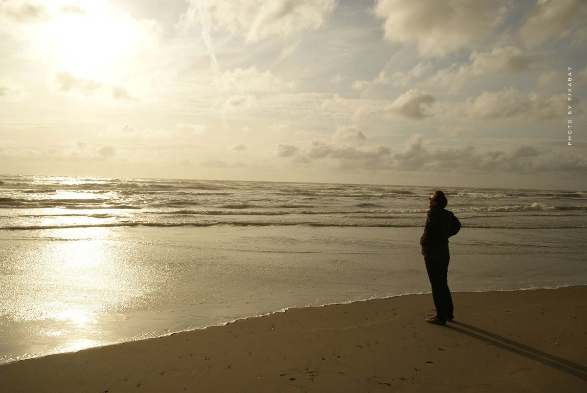 Vacanze a Zandvoort: Spiaggia, pista & Center Park - Le attrazioni principali & Eventi
