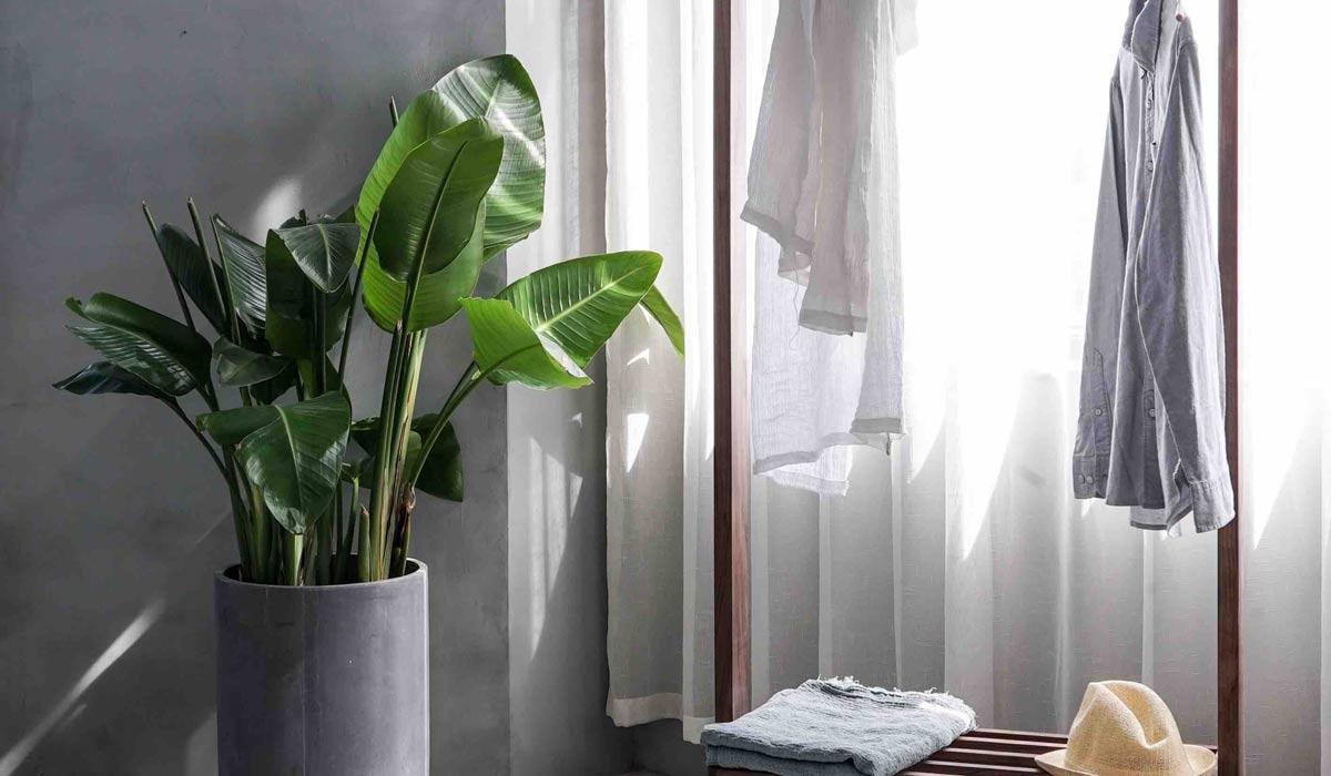 L'arte del vivere minimalista: dall'abbigliamento alla casa