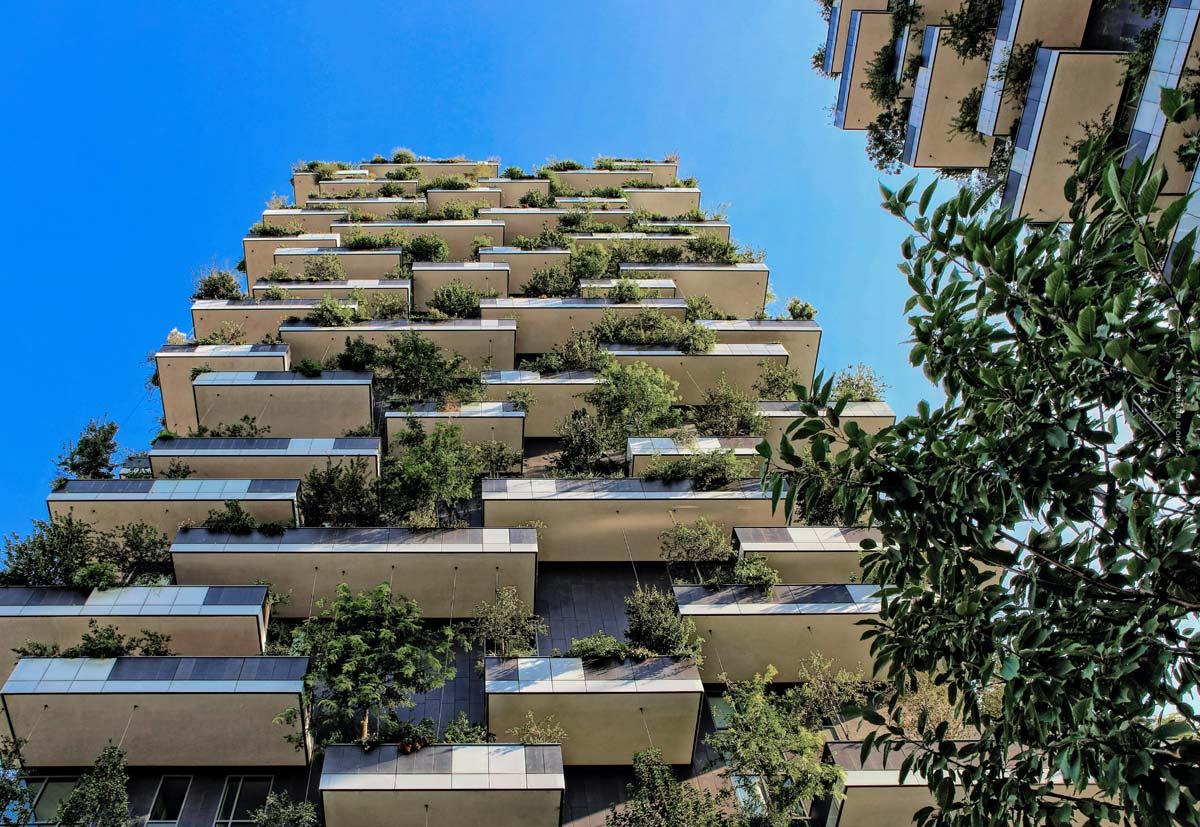 Appartamento a schiera: vantaggi e svantaggi, definizione e importanza per inquilini, acquirenti e interessati
