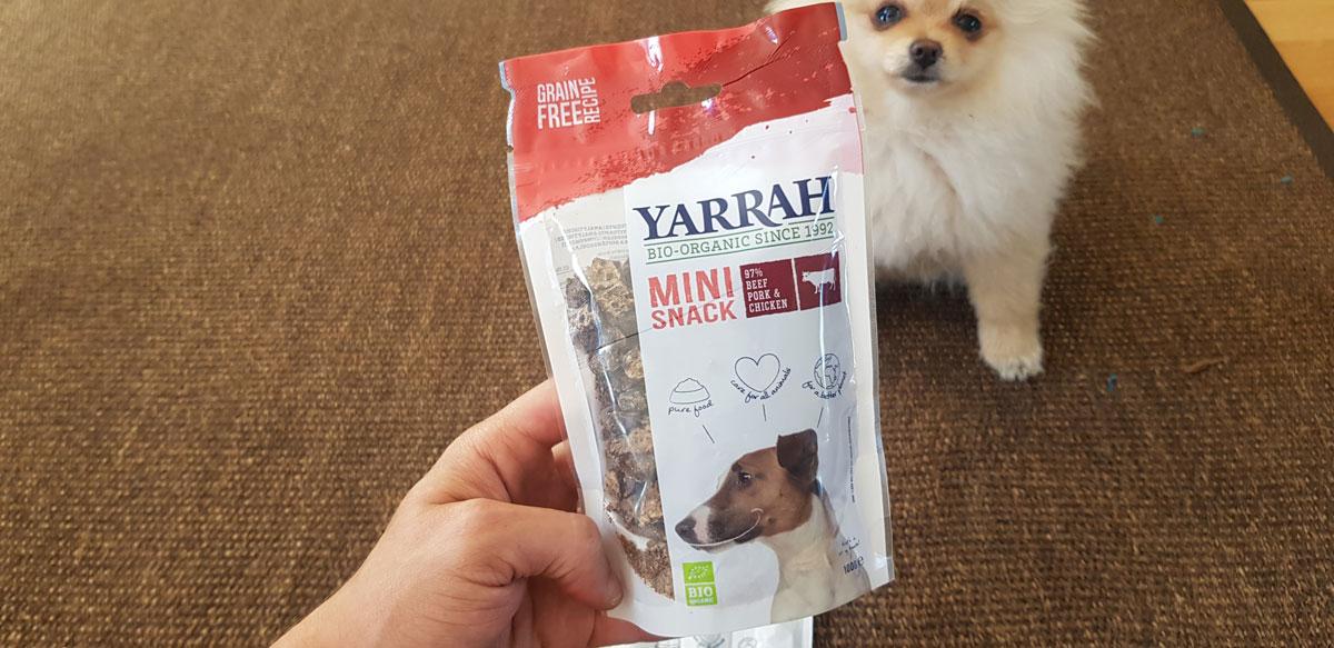 Cibo biologico per cani?! Yarrah ordinato e testato: Cibo secco, bastoncino da masticare e mini snack come ricompensa