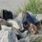 Scarpe estive per donne: Sandali, separatori di punta, muli & Co. – Top 5